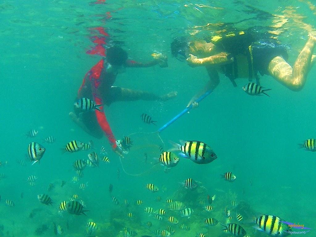 family trip pulau harapan, 1-2 agustus 2015 gopro 31