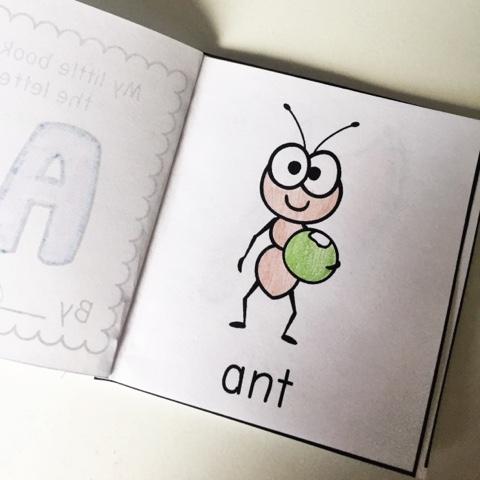 https://www.teacherspayteachers.com/Product/Mini-Alphabet-Book-Printables-ELEMENTARY-Font-1744601