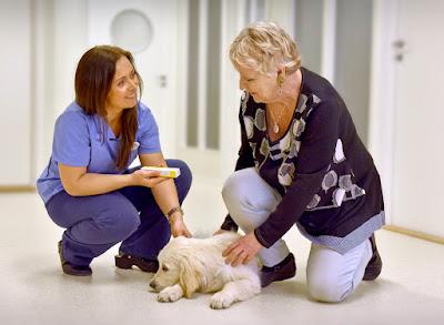 Bente og kunde med hund