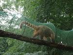 Wycieczka do zoo w Ueckermunde 14.06.2016 r.