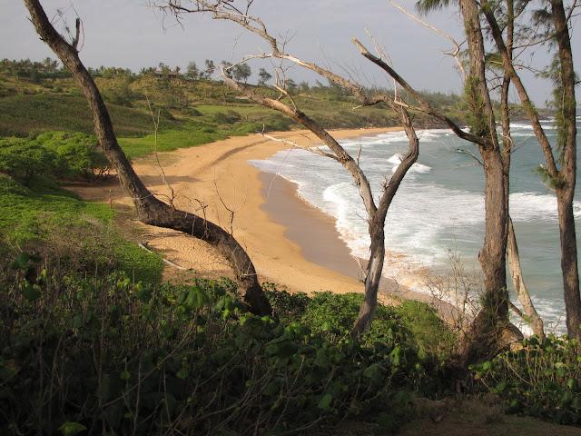 2012 - IMG_9088_Donkey_Beach.JPG