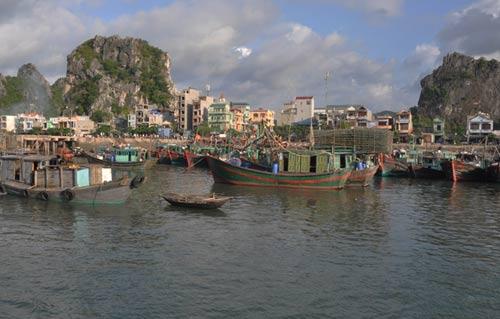 Bao Kujira gay mua lon khi do bo vao Quang Ninh  2
