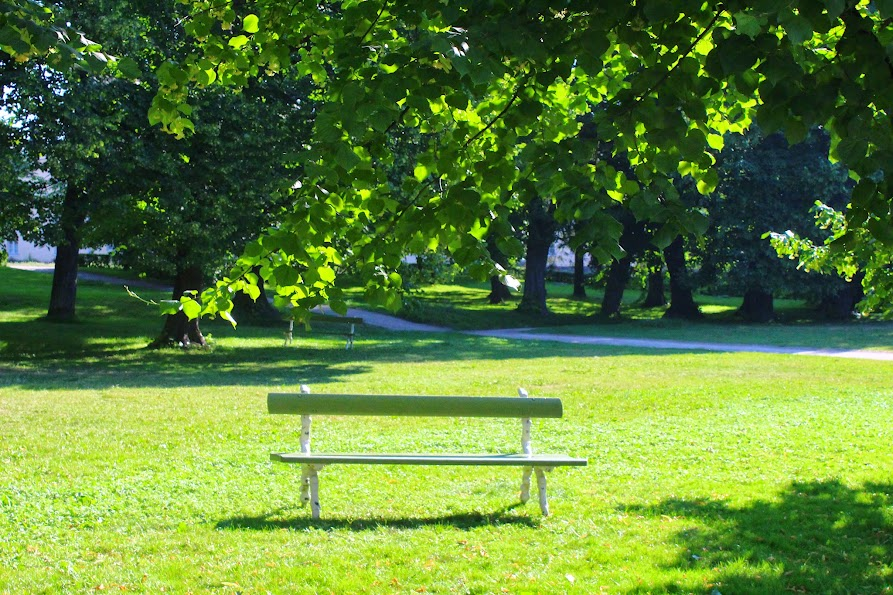 suomenlinna park benches