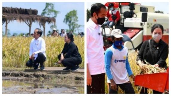 Jawab Relawan Jokowi, Alex PDIP Sebut Pencapaian Puan Luar Biasa, Bukan Kaleng-Kaleng, Ini Faktanya