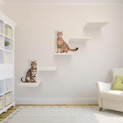 6cccb69fba0aefd03509648df5c854e6--cat-shelving-diy-cat-wall-shelves