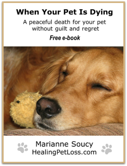 When your pet is dying a peaceful death for your pet without in this e book you will get strategies helpful advice and specific steps you can take immediately to prepare and be there for your beloved companion now fandeluxe Document