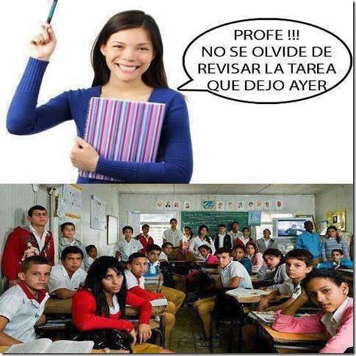 humor hacer la tarea de clase (2)
