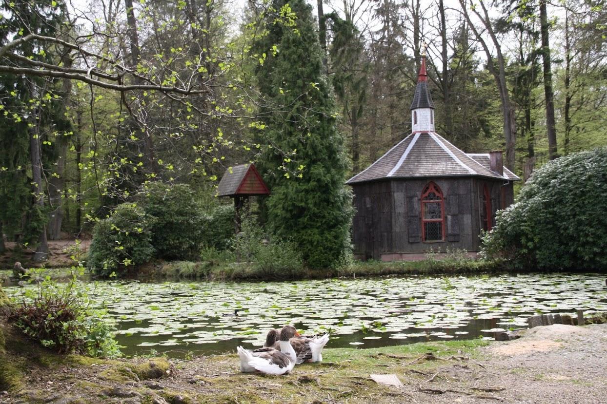 Großer Teich im Eulbacher Park