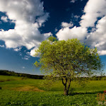 Panorama 007_1280px.jpg