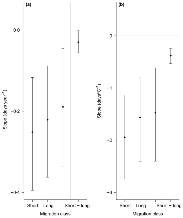 Posterior median advances (and associated 95% CIs) in mean/median arrival dates for different bird migration distance classes (a) over time (day per year) and (b) with temperature (days per °C) at the mean latitude of the data set in the Northern Hemisphere (46·1°N), as estimated under our ecological models. Unclassified migrants refer to migrants that were not assigned migration distances in the original studies. Estimates are for migrants that do not rely on forest habitats during breeding and passage; migrants with a predominantly invertebrate diet; habitat and diet specialists; body size of 10 g; arrival data as reported by standardized field studies; and the decade 1980 for year slope estimates. The difference in slope between short- and long-distance migrants as estimated directly from our ecological models (plotted to the right of the grey vertical line) does not overlap zero and is significant. Graphic: Usui, et al., 2016 / Journal of Animal Ecology