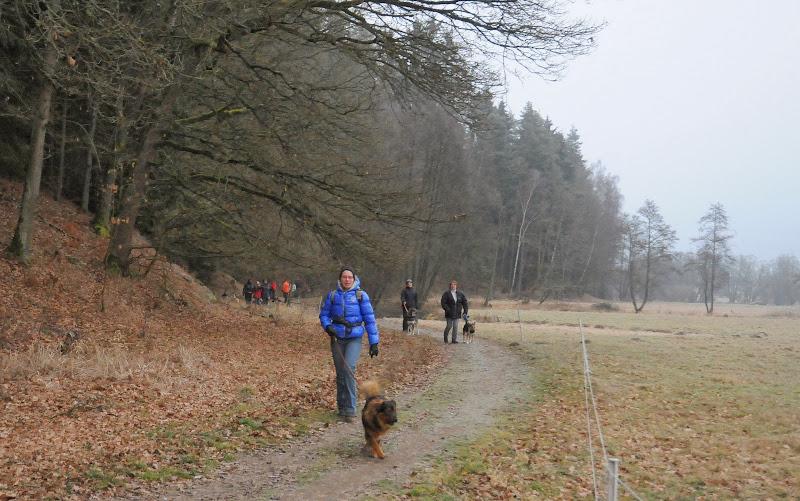 20140101 Neujahrsspaziergang im Waldnaabtal - DSC_9795.JPG