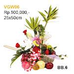 VGW06.jpg