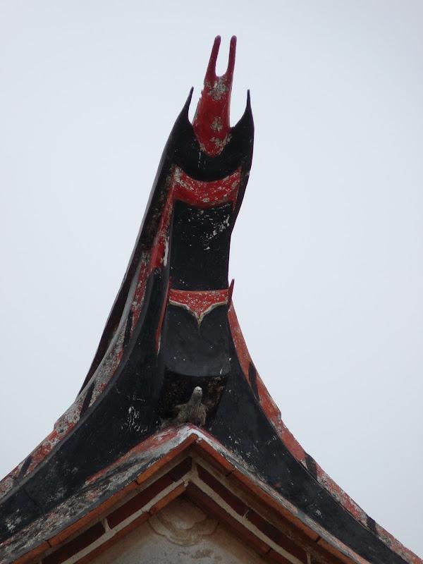 TAIWAN.Archipel de KINMEM - P1100550.JPG