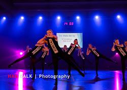 Han Balk Voorster Dansdag 2016-3808-2.jpg