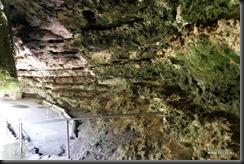 Umpherston Sinkhole Mt Gambier