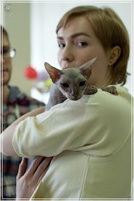 cats-show-24-03-2012-fife-spb-www.coonplanet.ru-061.jpg