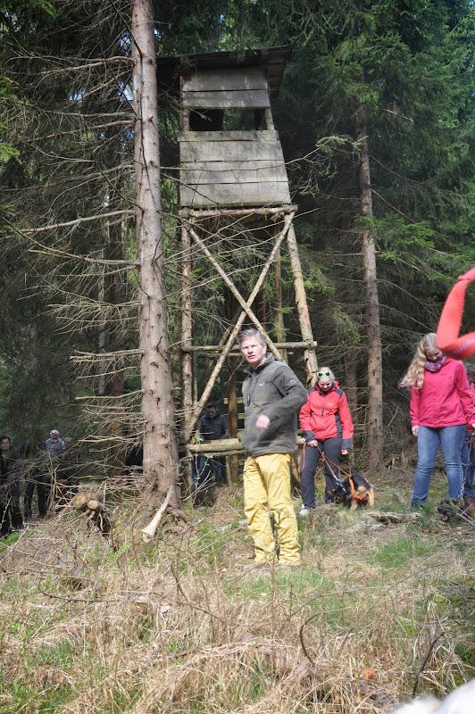 2014-04-13 - Waldführung am kleinen Waldstein (von Uwe Look) - DSC_0412.JPG