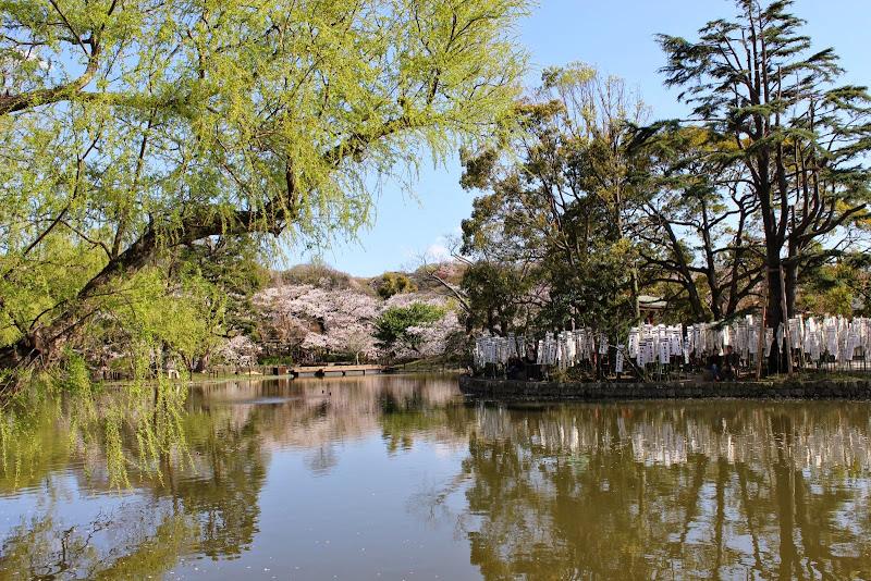 2014 Japan - Dag 7 - marjolein-IMG_1022-0647.JPG