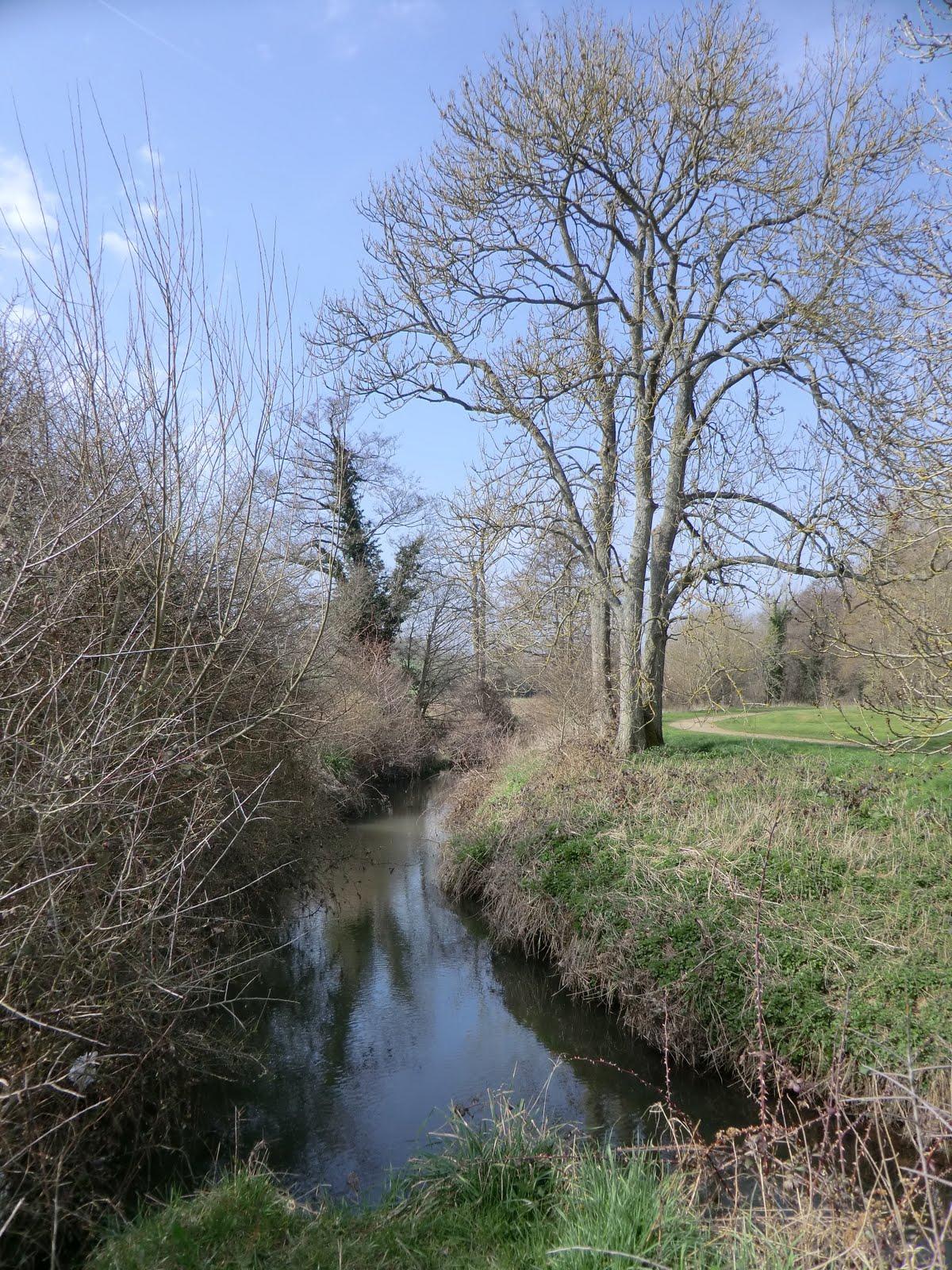 CIMG1883 River Ouse, East Mascalls