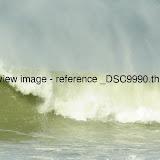 _DSC9990.thumb.jpg