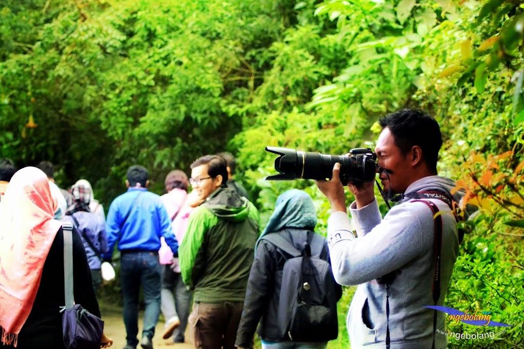 dieng plateau 5-7 des 2014 nikon 08
