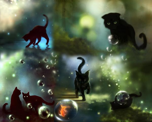Kittens And Goldfish, Spirit Companion 4