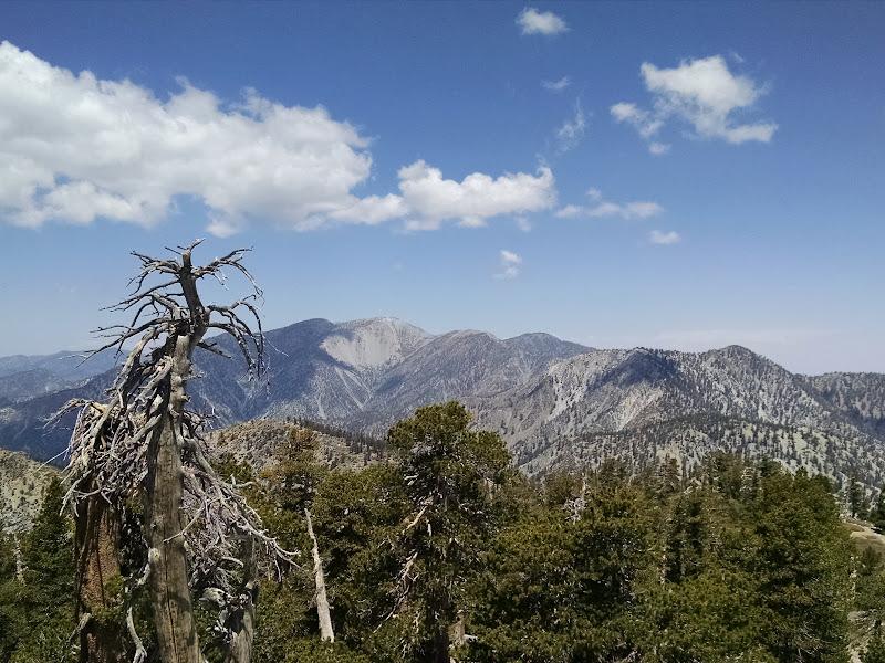 Cucamonga Peak • Mount Baldy