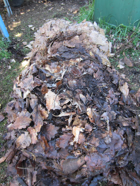 a pile of leafmould backyard