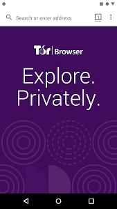 Tor Browser (Alpha) 60.7.0