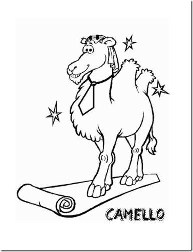 camello colorear dos jorobas