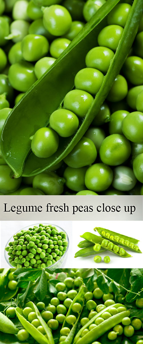 Stock Photo: Legume fresh peas close up