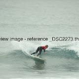 _DSC2273.thumb.jpg