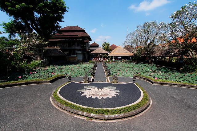 Vista del estanque del Lotus Cafe desde el templo