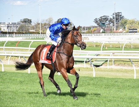caulfield stakes_benbatl 4