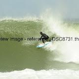 _DSC8731.thumb.jpg