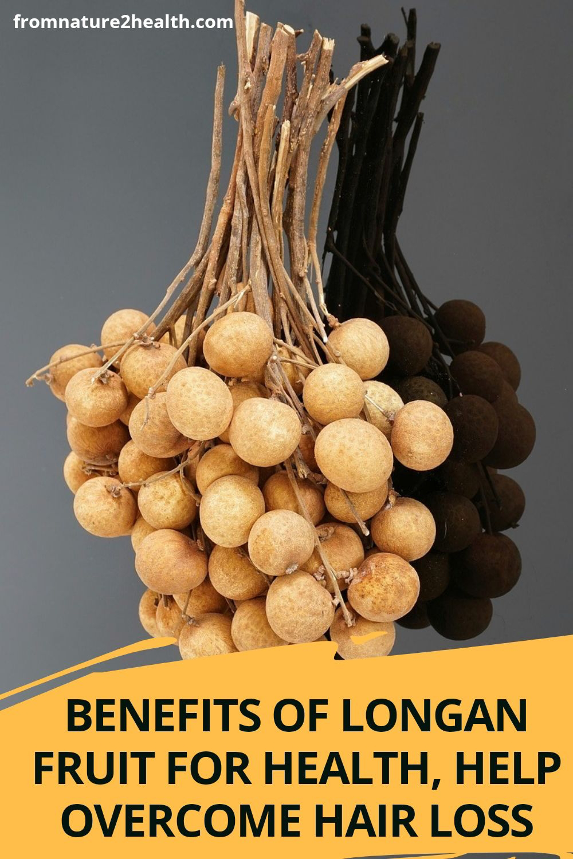 Benefits of Longan Fruit for Health, Help Overcome Hair Loss, Kidney Stones, Anemia, Immune, Heart
