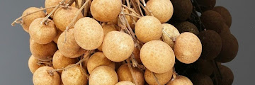 Benefits of Longan Fruit for Health, Help Overcome Hair Loss