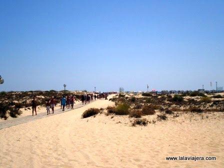 Camino a la playa de Ilha Tavira