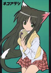 Neko Arashi