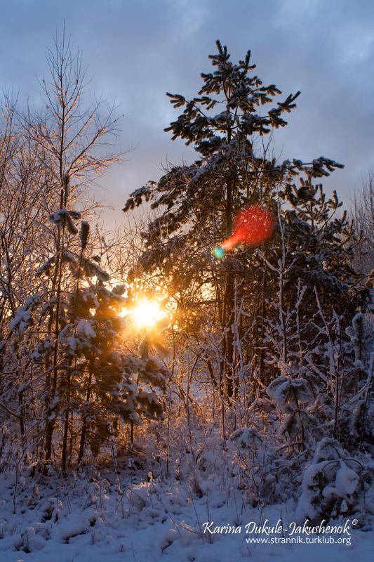 Первый снег на восходе