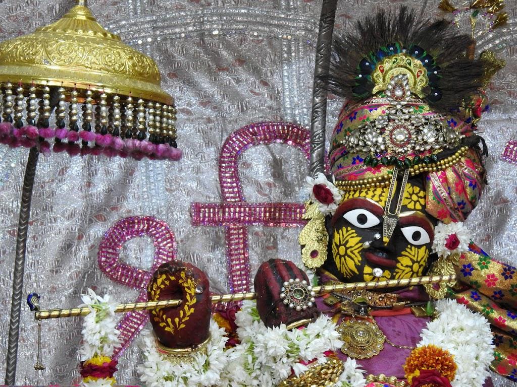 Radha Govind Devji Deity Darshan 10 Jan 2017 (3)