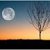 Cerita Fantasi: Legenda Dewi Bulan