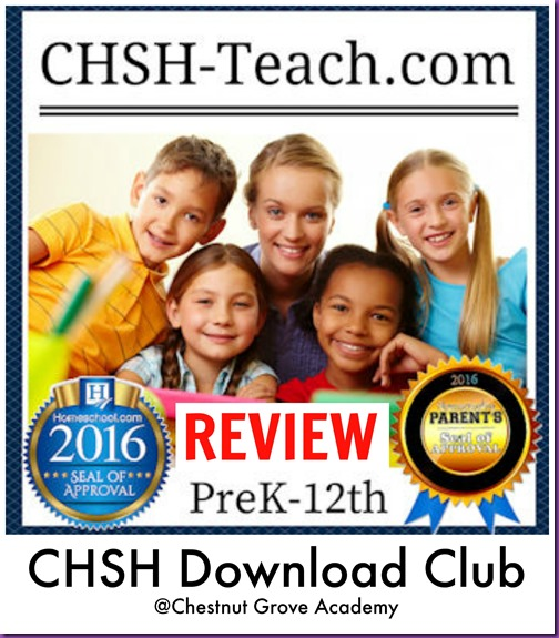 CHSH Review