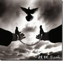 سجن الروح