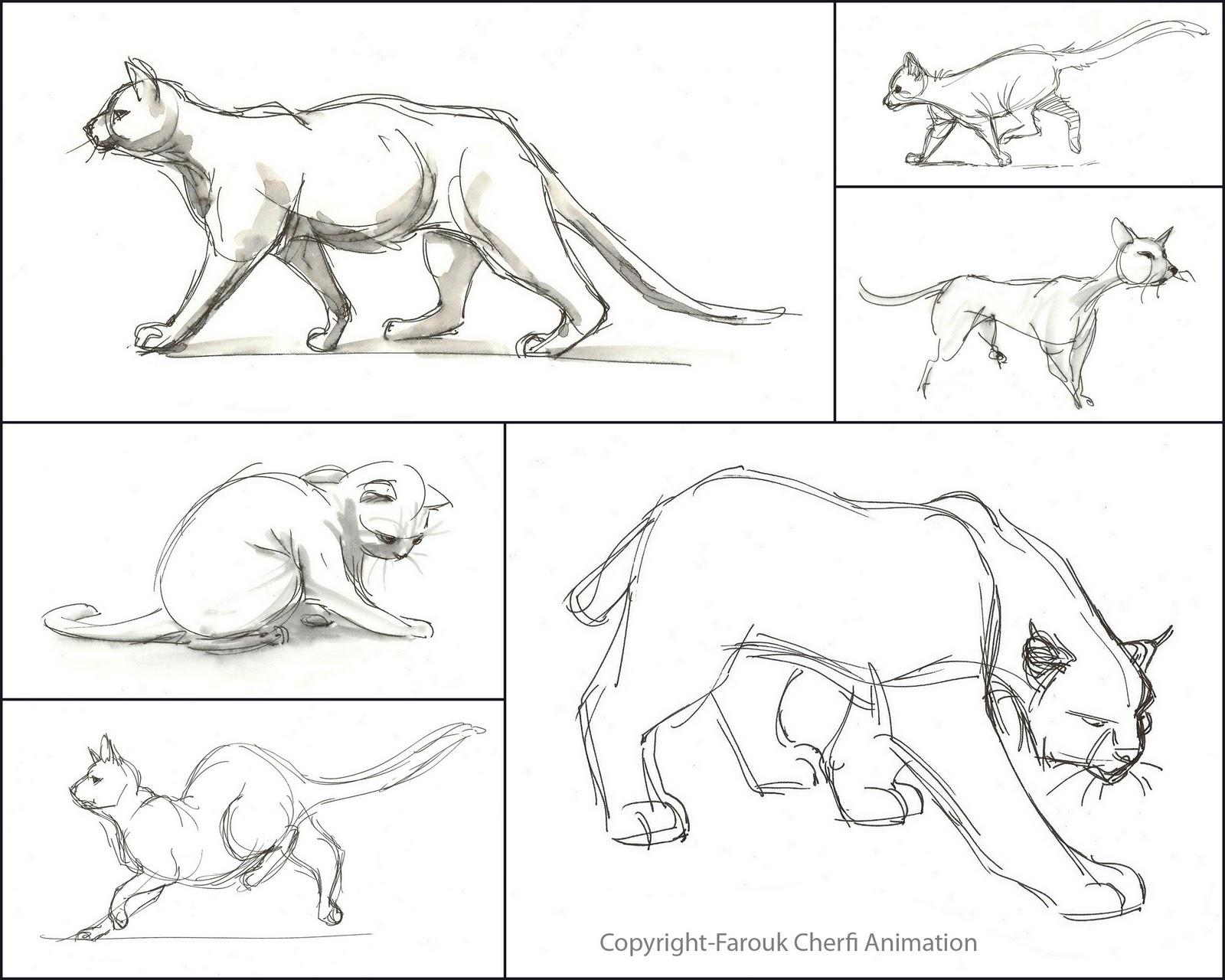 farouk animation art  character design
