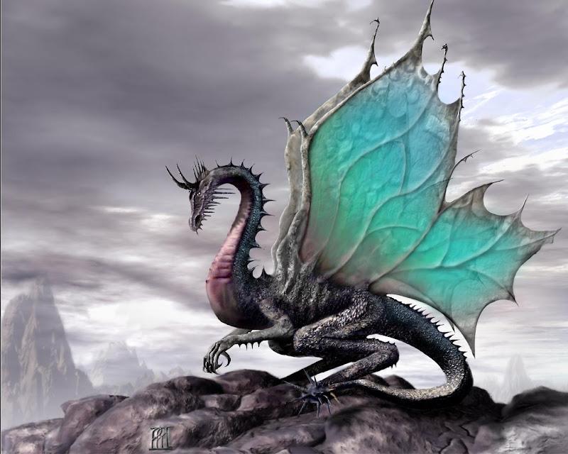 Fantasy Green Dragon, Dragons
