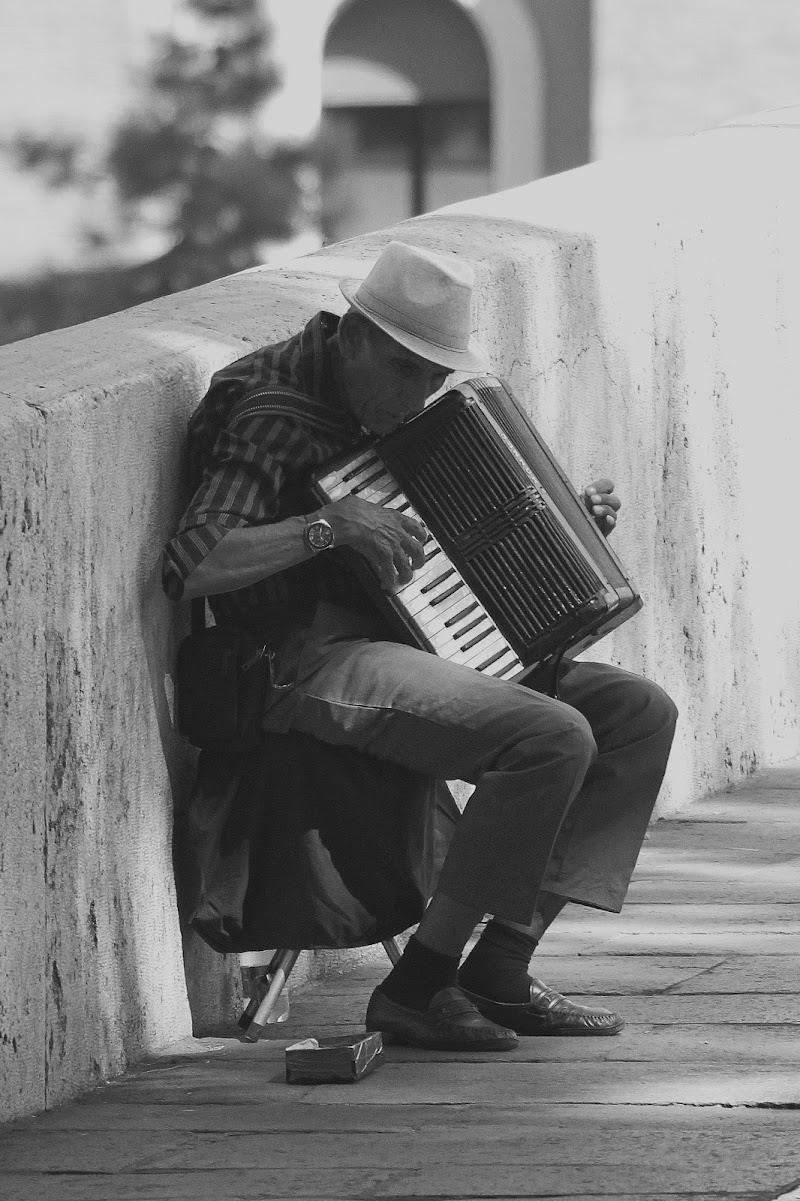 musica... dal vivo di Vascolentina