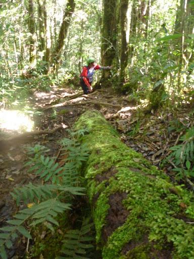 Mt. Kitanglad Rugged Mountain Race (Impasug-ong, Bukidnon)