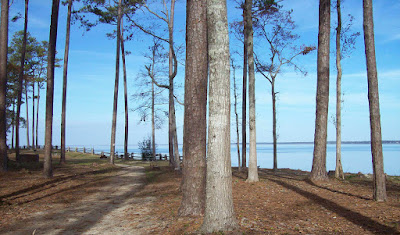 Pine Cliff Recreation Area