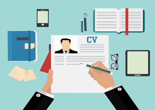 cv and resume format
